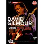 Music Sales David Gilmour: Guitar Quick