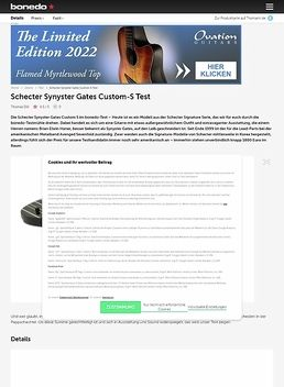 Synyster Gates Custom S